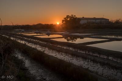 Marais salant at dawn