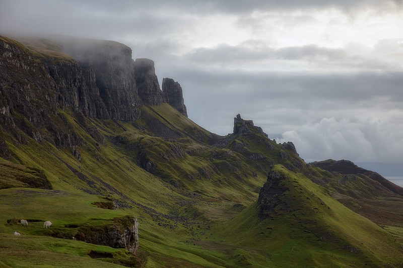 Sheep and the Quiraing