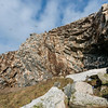 Kittiwakes near the trail below the bird colonies at Hornøya, Vardø, Varanger, North Norway.