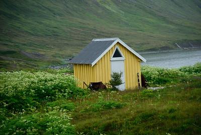 Hesteyri. Reyrhóll. Stöðvarhúsið. 2011.