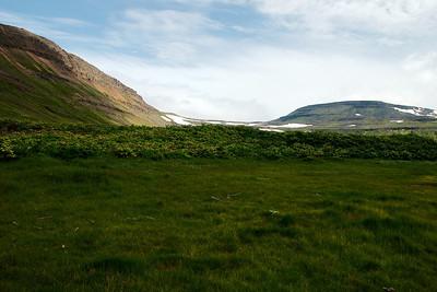 Bæjarhóllinn í Neðri-Miðvik?