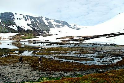 Í Veiðuleysifirði