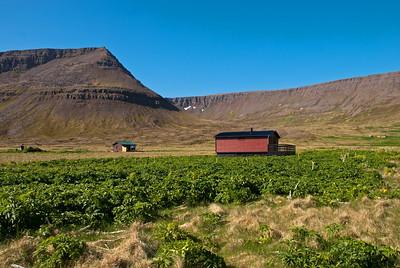 Aðalvík - Sæból. Borg. 2010.