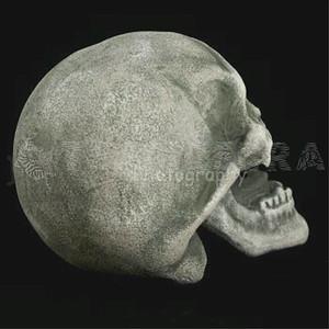 VAMPIRE DEMON SKULL Fangs Light-Up Eyes LifeSize Gothic Halloween Prop-3