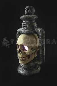 Light-Up SKULL LANTERN Halloween Gothic Graveyard Haunted Dungeon Prop-4