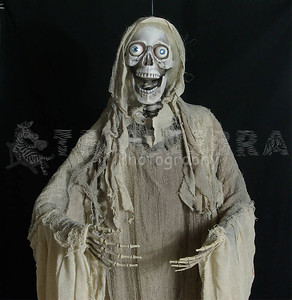 ANIMATED ZOMBIE GHASTLY GHOUL Life-Size Light-up Sound Halloween Prop -1