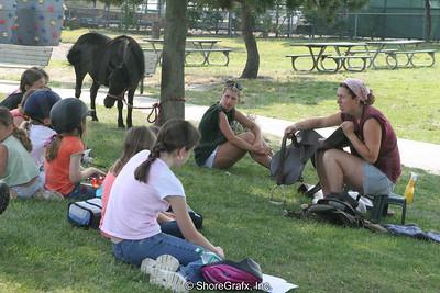 Horse Camp Veteran's Park 2006-07-19