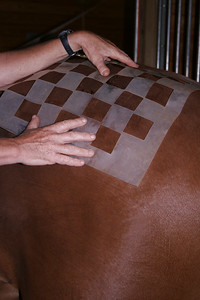 A template is an easy way to make quarter marks. The checkerboard pattern pictured here is a common one.