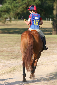 Annie Lane-Maunder added quarter marks for the cross-country phase at the 2006 Novice level American Eventing Championships. (This is the horse that was used for illustrating the use of the template)
