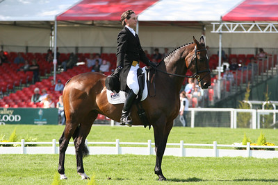 Australian event rider Matt Ryan's horse sports a kangaroo at the 2006 Badminton CCI****