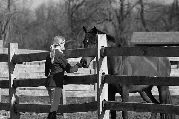 Fox Crossing Equestrian 04/18/2015