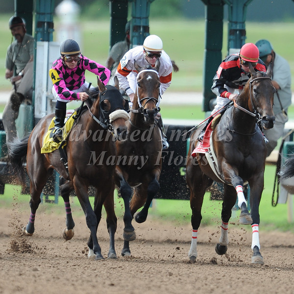 9 May 2009: Spring Thoroughbreds at the Lone Star Park in Grand Prairie, Texas.