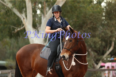 Horse Events 2018