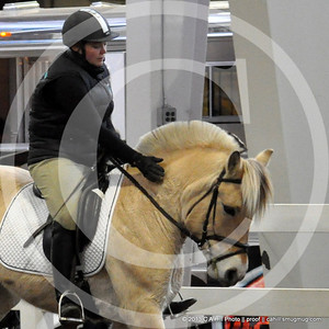 2013.11.9 Equine Affaire - Fjords