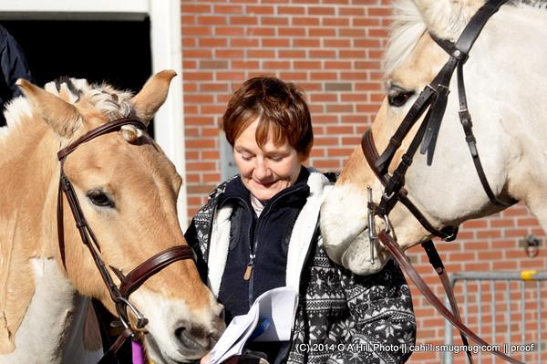 2014.11.15 Equine Affaire FJORD DEMO!