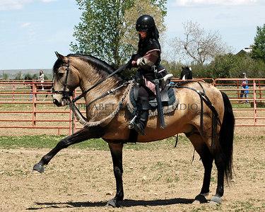 Colorado Horse Rescue Benefit - 2004