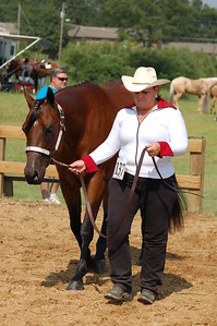 North River Riding Club Horse Show 6-27-09 Gordo 035