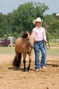 North River Riding Club Horse Show 6-27-09 Gordo 008