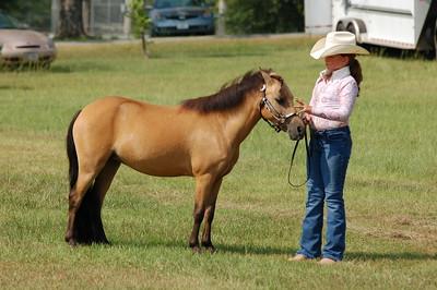 North River Riding Club Horse Show 6-27-09 Gordo 002