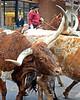 Longhorns 6442 al ls18 dh15 sh150