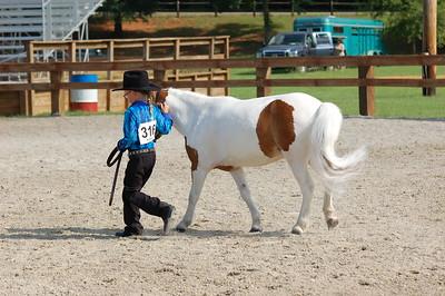 North River Riding Club Horse Show June 20 th Sokol Park Arena 045