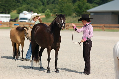 North River Riding Club Horse Show June 20 th Sokol Park Arena 055