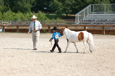 North River Riding Club Horse Show June 20 th Sokol Park Arena 047