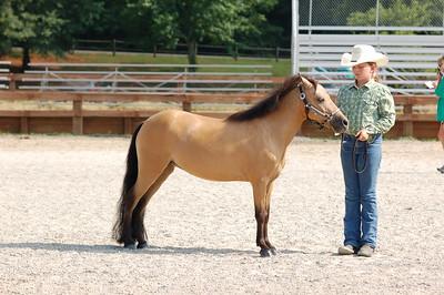 North River Riding Club Horse Show June 20 th Sokol Park Arena 058