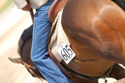 North River Riding Club Horse Show June 20 th Sokol Park Arena 010