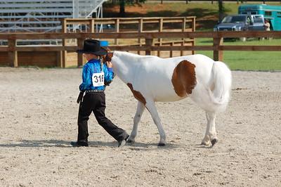 North River Riding Club Horse Show June 20 th Sokol Park Arena 046