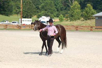 North River Riding Club Horse Show June 20 th Sokol Park Arena 053