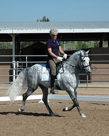 Frances Carbonnel demonstrating on her Andalusian (PRE) stallion, Tempranillo III, aka Fino