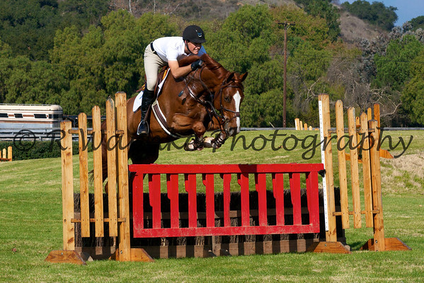 Horse Jumping Clinics