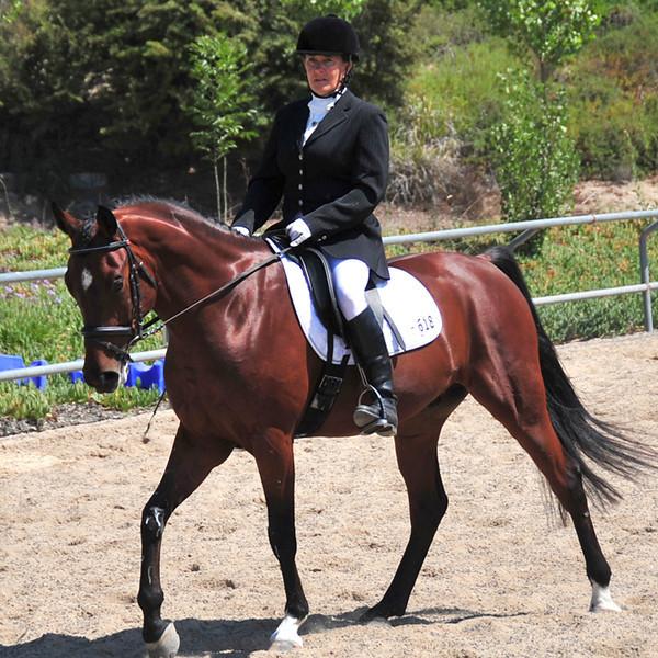 Debbie-Horse-4