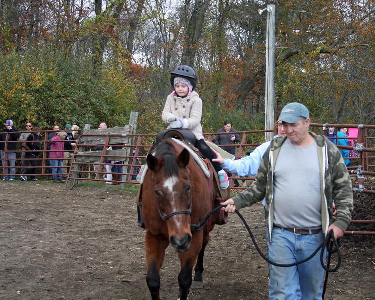 Horse Play Annual Fall Festival 2016