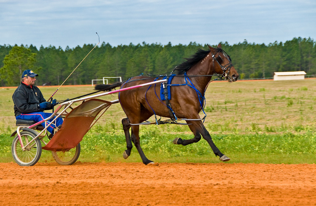 Destined Hanover_James Dean