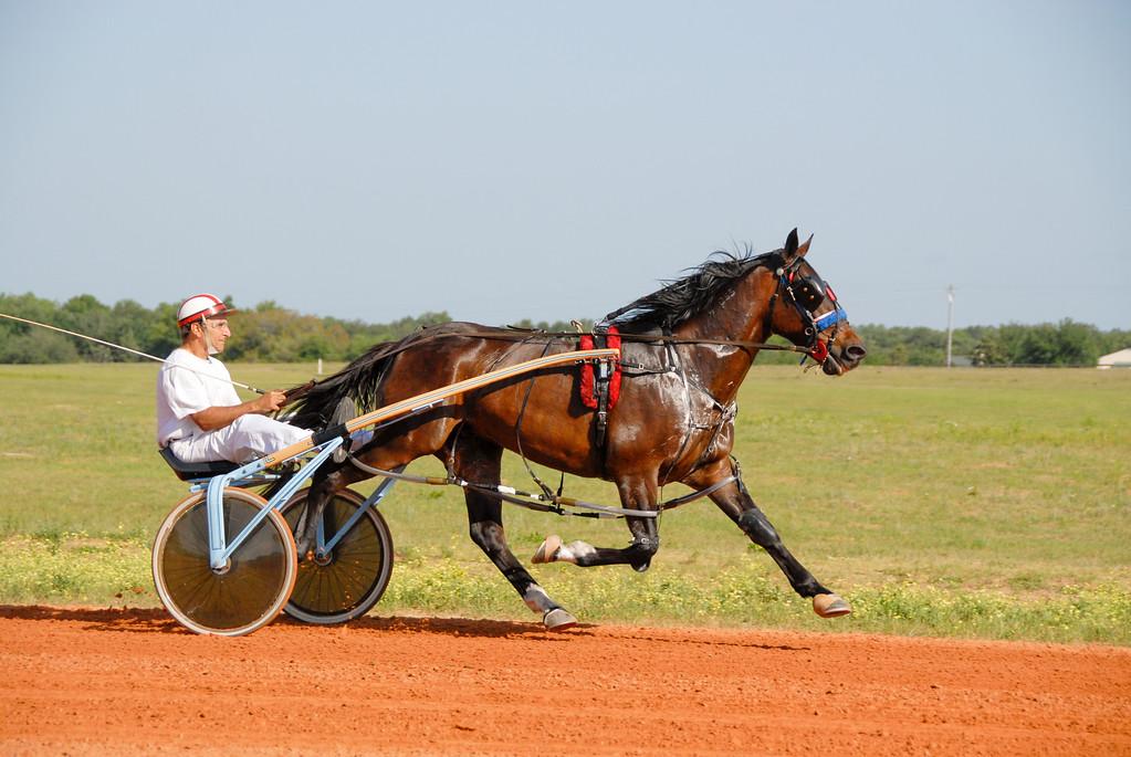 Joly Jate 4g<br /> Gene Treffiletti Trainer-Driver