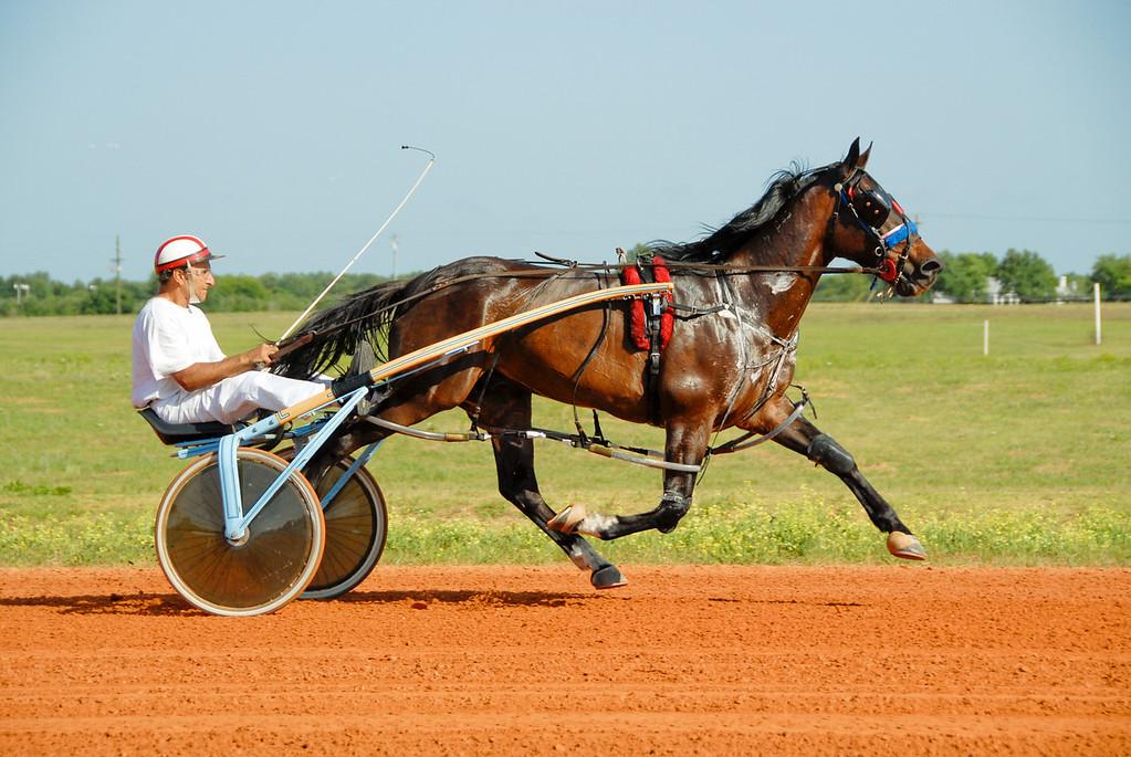 Gene Treffeletti Trainer-Driver<br /> Joly Jate 4 g