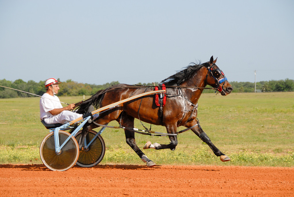 Joly Jate 4 g<br /> Gene Treffiletti Trainer-Driver