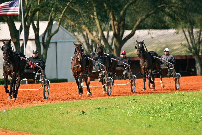 Group Training