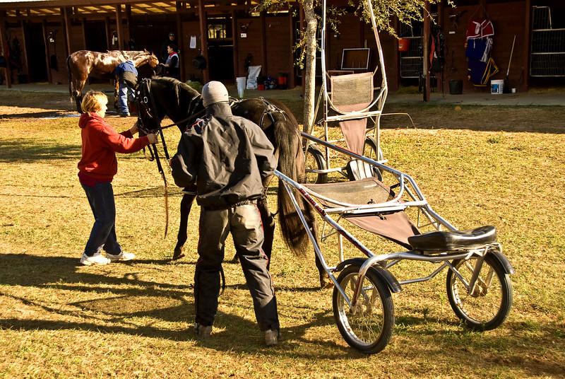 Tina (groom) assists Marcus.