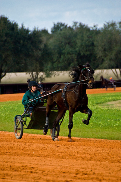 Jim Cruise Stables_67
