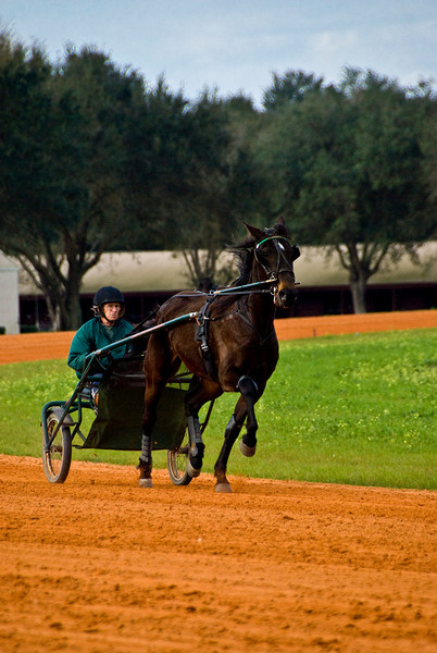 Jim Cruise Stables_66