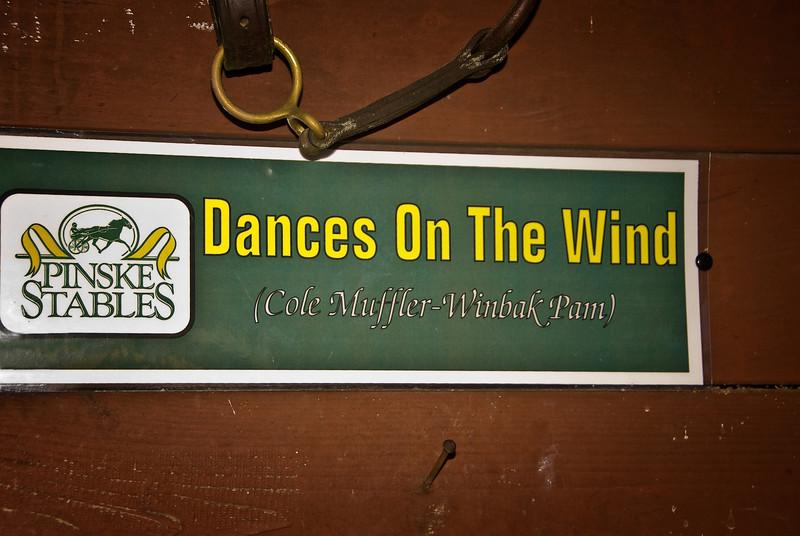 Dances-on-the-Wind1-for-Smug-mug