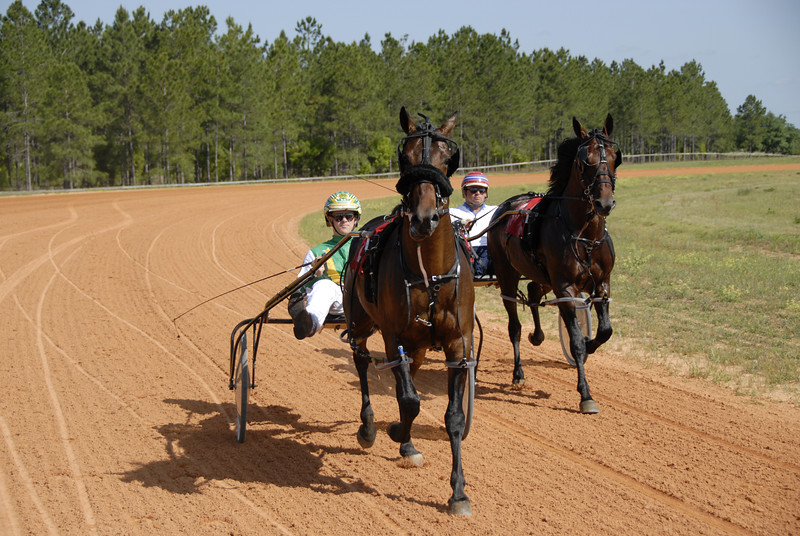 FIRST RACE<br /> 1.Riesling Hanover,3c Tr.James Dean Dr. James Dean  <br /> 2.Domitian Hanover,3c Tr. James Dean Dr. Jody Jamieson