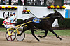 Winbak Pace Race 5
