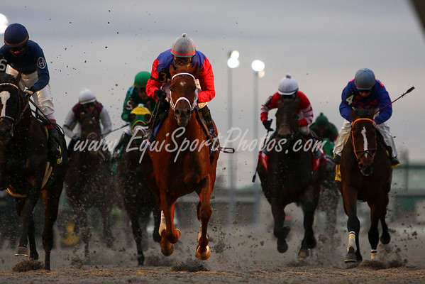 The John Battaglia Stakes at Turfway Park. Florence, Ky. 3.01.2008 (EquiSport Photos)