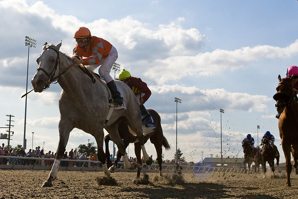 Delightful Kiss (Kissin Kris), Calvin Borel up, wins the G3 Turfway Fall  Championship 9.06.2008.