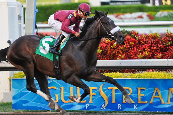 War Pass, with Cornelio Velasquez up, wins an Allowance at Gulfstream Park. 2.24.2008 (EquiSport Photos)