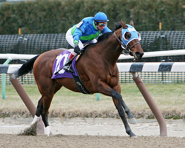 Pocatello (City Zip), with C. Lopez up, wins a MSW at Aqueduct. 1.05.2008 (sk)